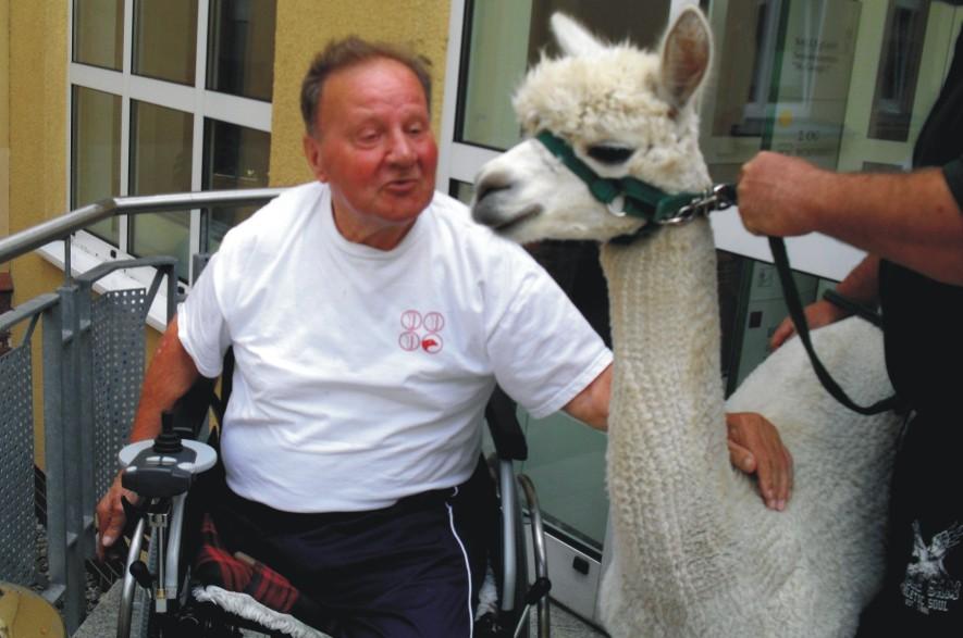 Tiergestützte Therapie Alpaka ,,