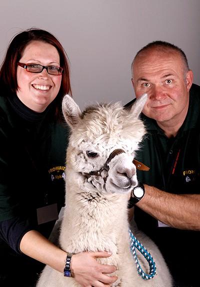 Tiergestützte Therapie Alpaka .