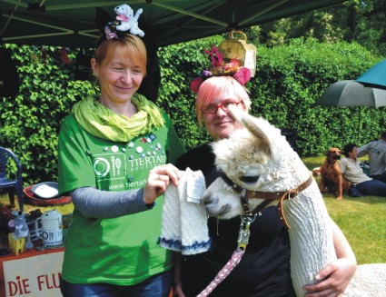 Tiergestützte Therapie Alpaka *...